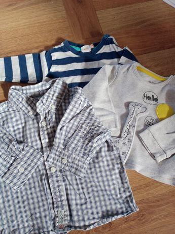 Bluzeczki chłopięce 62