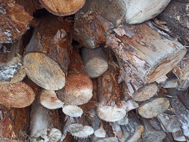drewno sosnowe, dębowe i topolowe