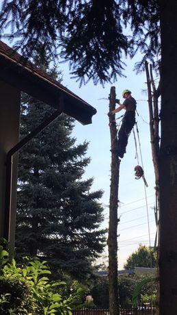 Prace wysokościowe wycinka drzew frezowanie czyszczenie rynien mycie