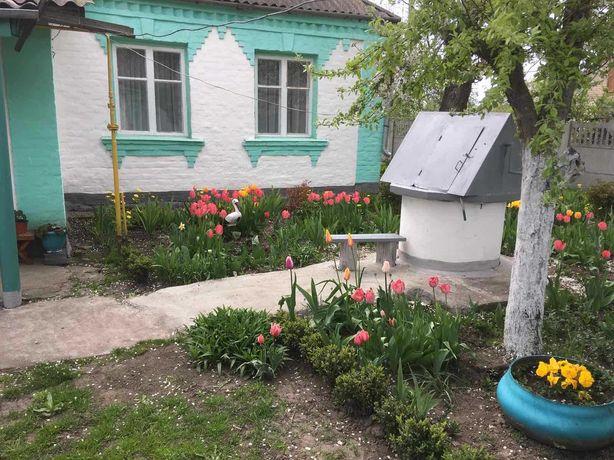 Продам хату в с. Іванівка, Ставищенського району Київської області