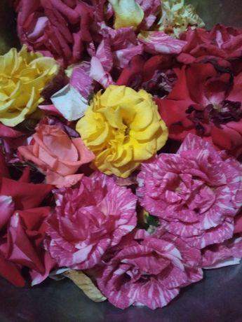 Розы лепестки