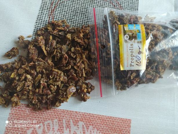 Kit pszczeli - propolis