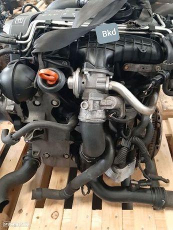 Motor Audi A3 Volkswagen GolfV Touran Jetta 2.0Tdi 140Cv Ref.BKD