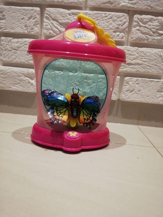 Latający motyl - zabawki Łódź - image 1