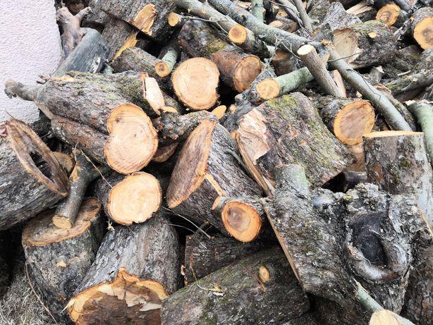 Продам дрова в чурках (яблоня)