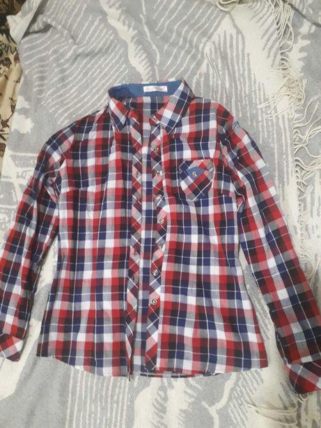 Рубашка Hoot Rdeer