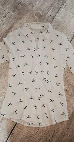 Koszula w ptaszki