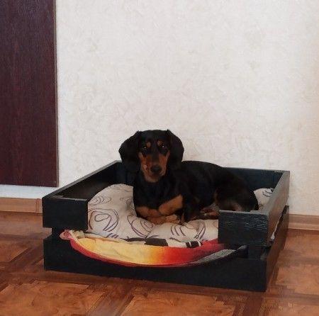 Лежак для собаки/кошки домашнего питомца