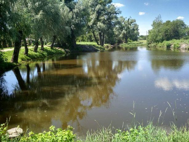 15 мин. от кп. Тихое, Экологичное место, 20 метров от озера, 10 соток