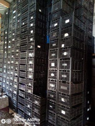 Ящики пластикивые