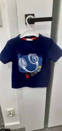 Koszulka cocodrillo