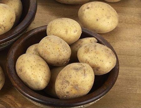 Сортовой картофель, картошка, картопя, семенной (посадочный)