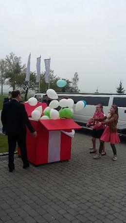 balony z helem na wesele akcesoria ślubne knurów