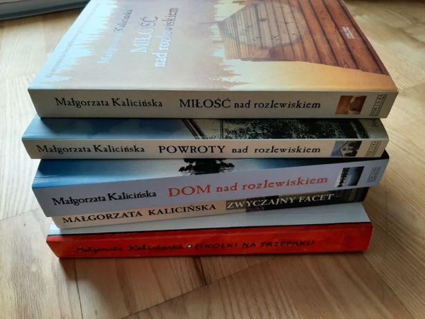 M. Kalicińska zestaw 5 nowych książek Dom nad rozlewiskiem Fikołki