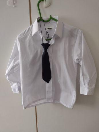 Zestaw koszula+spodnie