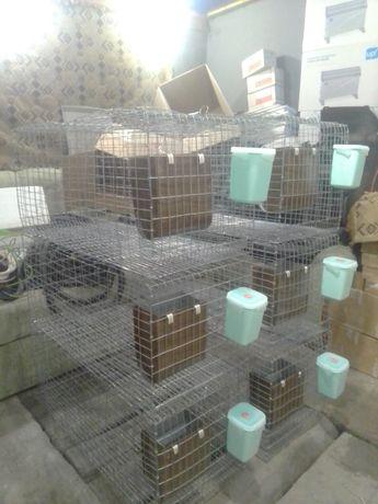 Клеткі для кролика