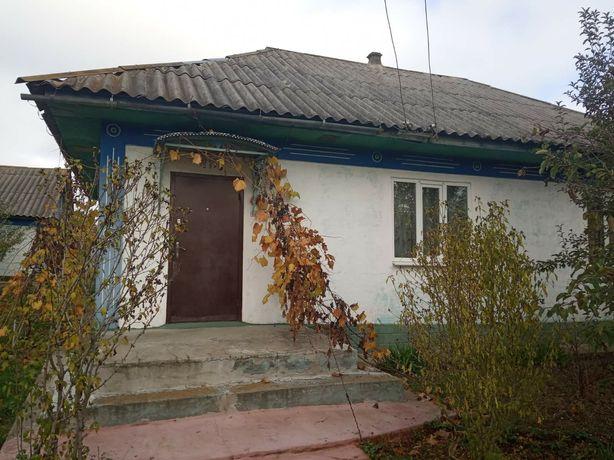 Дом с летней кухней, хоз постройками и большим огородом