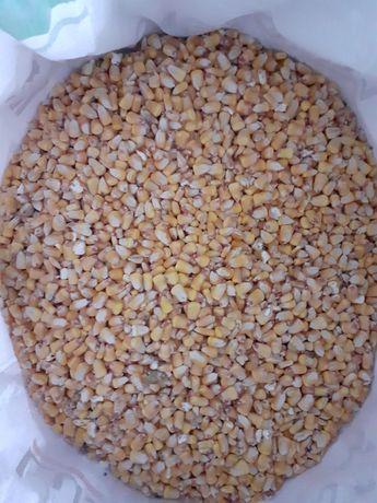 Vendo milho de cunha
