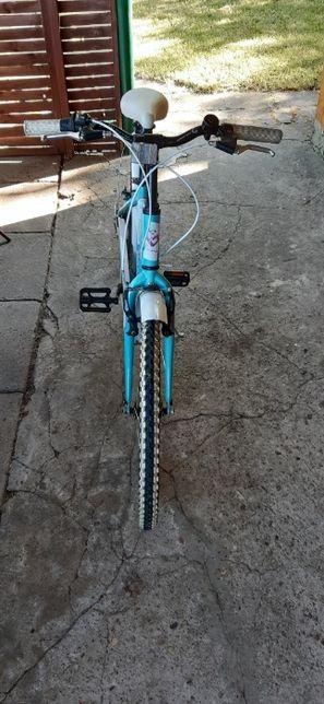 rower grand junior 24