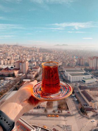 Преподватель турецкого языка