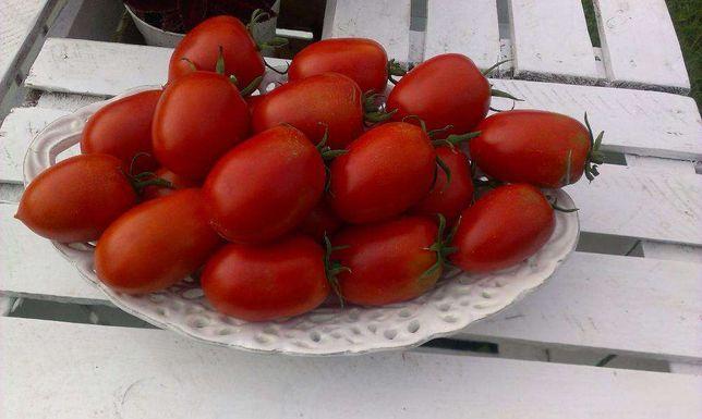 De Barao - czerwony - Pomidory Nasiona odporne na choroby