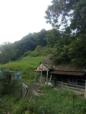Продається земельна ділянка в селі Грушево 50 сотен,за інформацією зве