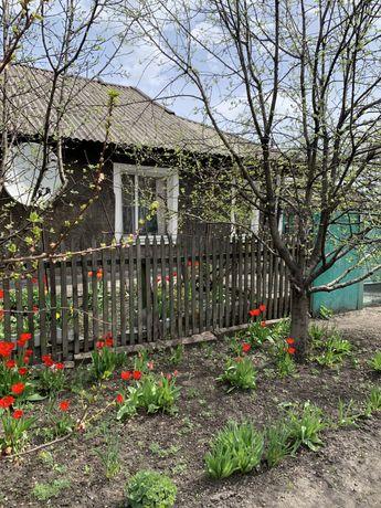 Дом/ малометражка в г.белицкое
