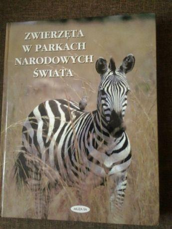 Książka Zwierzęta w Parkach Narodowych Świata