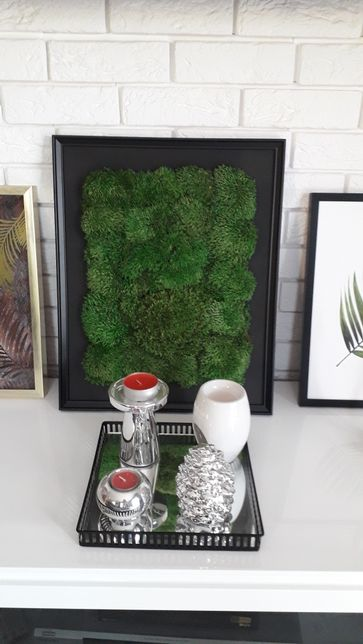Obraz z mchu - mech poduszkowy 40x50 cm