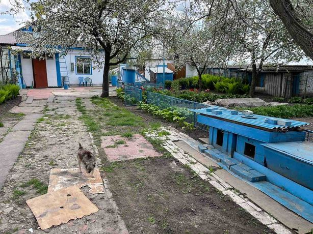 2-к квартира по вул. Лісний масив, 8 в с. Триліси Фастівського р-ну