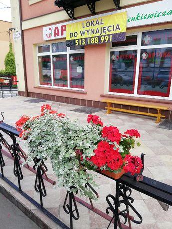 Lokal 160 m2 + 40 m2 tarasu po aptece od zaraz w Opatowie
