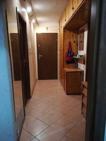 Mieszkanie na wynajem, centrum Choszczna, 3 pokoje, 48 m2