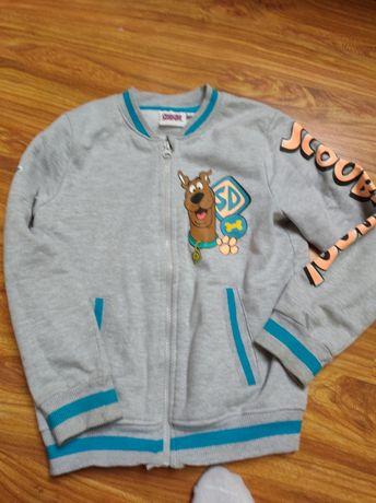 Bluza Scooby-Doo 122