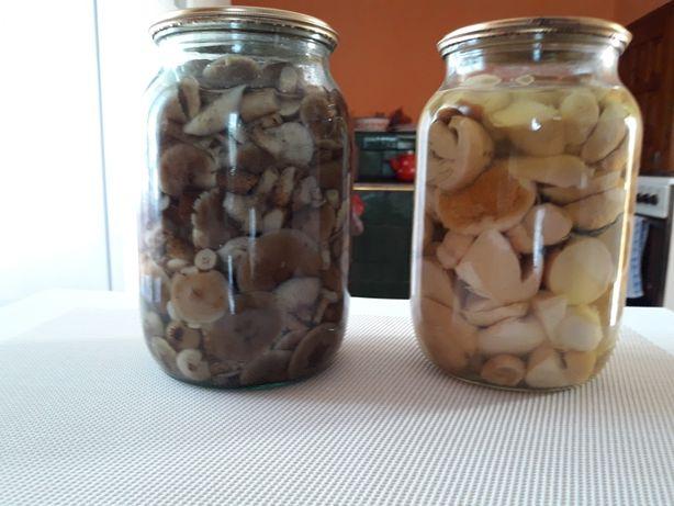 Опеньки мариновані,гриби білі мариновані
