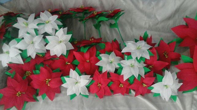 Kwiaty, gwiazdy betlejemskie z krepiny