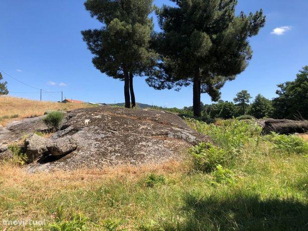 Terreno com cerca de 12 hectares com anexo transformado p...
