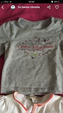 Calwin Clain bluzeczka i inne ...