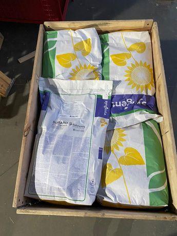 Сингента Субаро семена подсолнуха насіння соняшнику подсолнечника