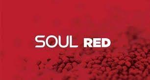Rain (Рейн) Soul Red - здоровье и антистарение