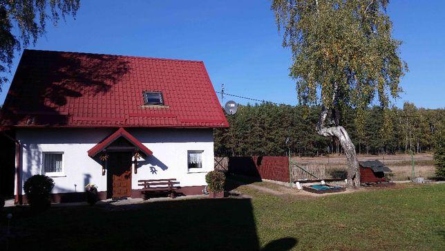 Bory Tucholskie oaza ciszy i spokoju, dom pod lasem, agroturystyka