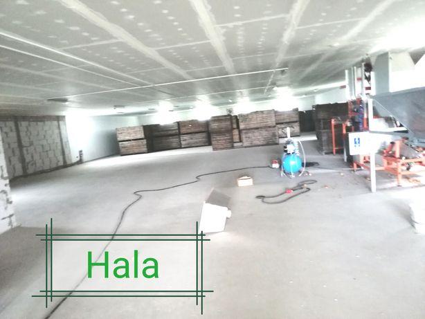 Hala, magazyn 800m2