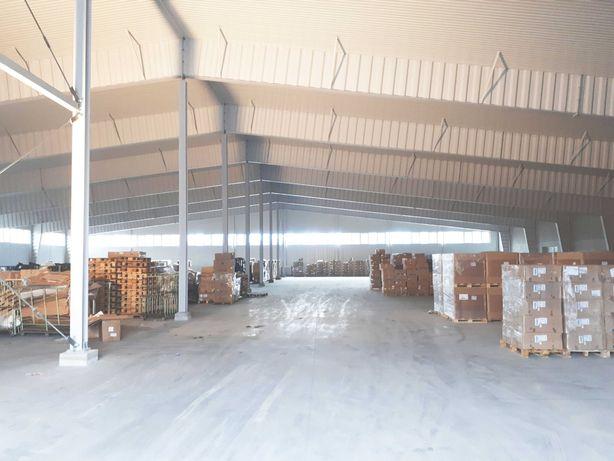 Hala 3.000 m2 - Poddębice