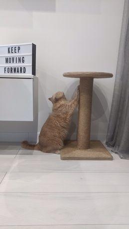 Когтеточка, царапка , для кошек,для котов