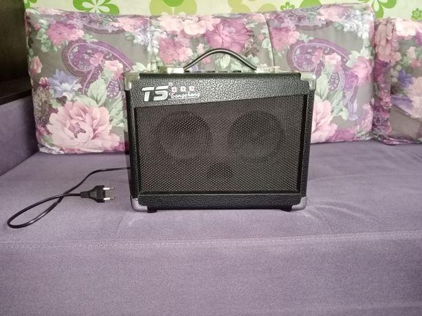 Комбоусилитель для акустической гитары Amp TS AP-15