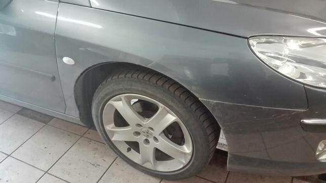 Blotnik Peugeot 407