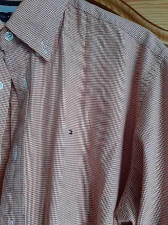 Koszula tommy