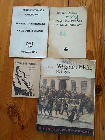 """Dzieje narodu i państwa polskiego. Tomasz Schramm, """"Wygrać Polskę""""."""