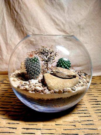 Pustynia w szklanej kuli z kaktusami