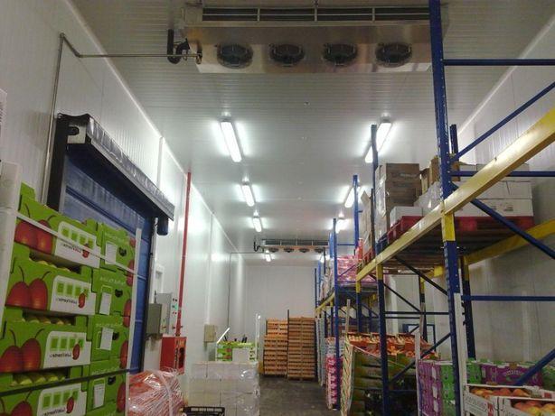 Холодильная камера для бананов, охлаждения хранения фруктов
