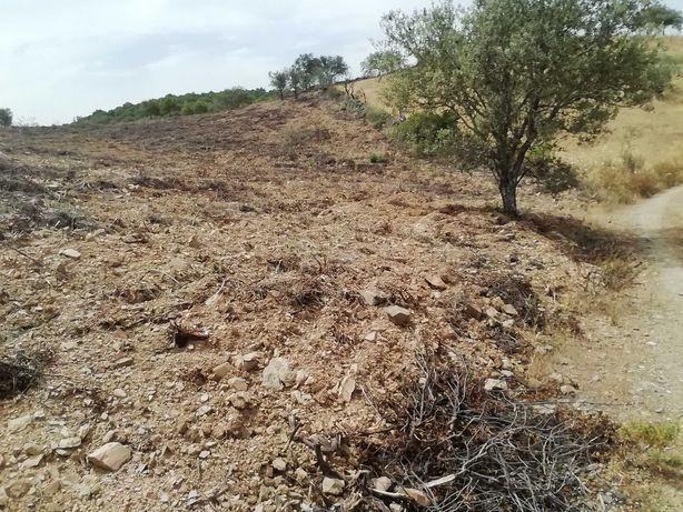 Terreno para venda em Alcoutim-11000 M2
